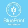Blueprint Coupon